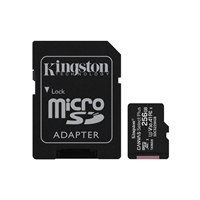 KINGSTON SDCS2/256GB